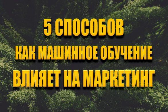 5sp.jpg