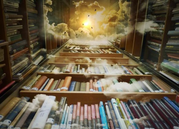 library-425730_1280.jpg