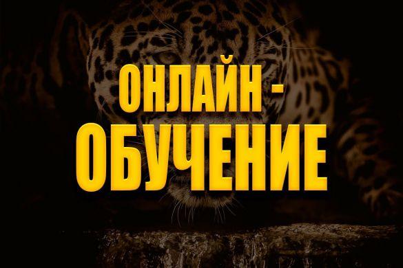 online-obuchenie.jpg